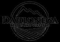 Enjoy a Romantic Weekend Away for Two, Dahlonega Resort and Vineyard